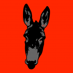 cropped-X-mas-Donkey_Avatar_new.png